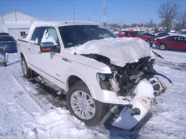 Salvage 2013 FORD F150 - Small image. Lot 16715045